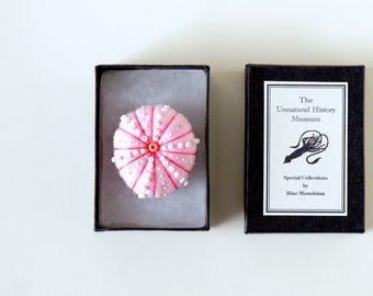 Sea Urchin Brooch with Box - sea creature felt miniature plush pin biology nature ocean toy gift shell pink