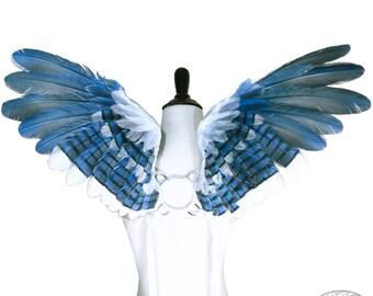 Blue Jay Wings - Raimel No. 2 - Small Custom Feather Angel Wings