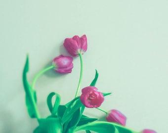 Flower Photograph - Spring - Floral Wall Art - Red White Green - Shabby Chic Decor - Minimalist Art - Modern - Tulip Art Print - Farmhouse