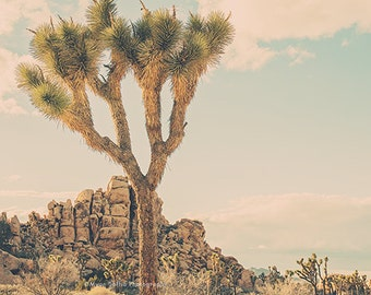Landscape Photo Palm Springs Desert Rocks Joshua Tree