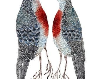 LARGE Love Struck Print, luzon bleeding heart doves, bird illustration, giclee watercolor print, 13 x 19