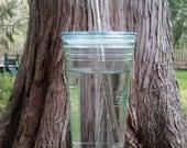 Eco friendly glass straws - set of 2