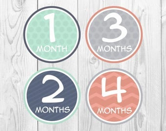Baby Month Stickers, Monthly Baby Stickers, Baby Milestone Stickers Grey Turquoise Coral, Monthly Belly Stickers