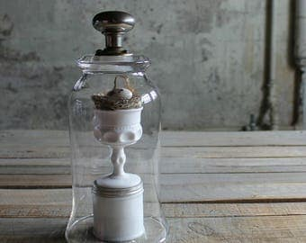 Glass Cloche with Metal Door Knob