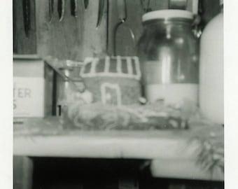 "Vintage Photo ""Forgotten Food Masterpiece"" Odd Home Snapshot Antique Photo Old Black & White Photograph Found Paper Ephemera Vernacular - 53"