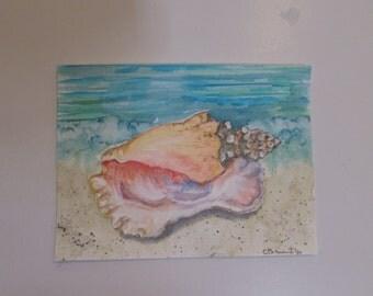 Sea Shells, original watercolor 6 x 8