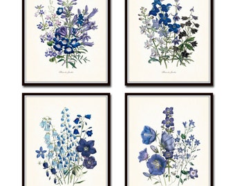 Fleurs de Jardin Print Set No. 13, Botanical Print, Giclee, Art Print, Antique Botanical Prints, Blue Flower Prints, Purple Flowers, Prints