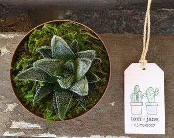 Wedding Stamp Type Succulent Tags Small White Rectangle Labels Custom Printing with Cactus Pair Names & Date - 50 Tags