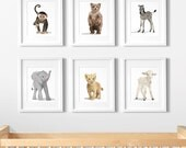 Animal Nursery Art, gender neutral nursery decor, Childrens Art - set of six unframed prints - zoo, jungle, woodland animal childrens art