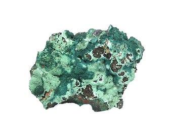 Rosasite Rare Blue Green Botryoidal Crystalline Druzy with Green Brochantite and Malachite on Cuprite Matrix Collector's Mineral Specimen
