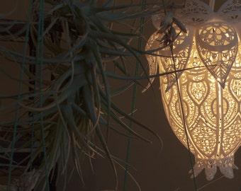 DISCOUNTED Lotus Lamp!
