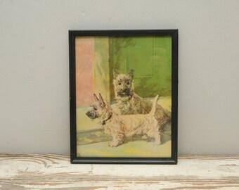 Vintage Cairn Terrier Dog Print Framed Diana Thorne