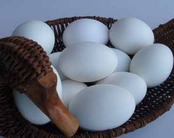 White Duck Eggs, Eggs for Pysanky, Eggs for Ornaments, Easter Eggs, Eggs for Crafts