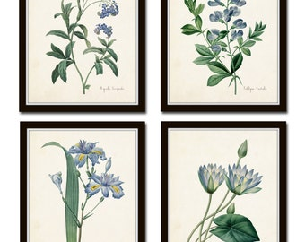 Botanical Print Set, Redoute Botanical Prints, Wall Art, Giclee, Blue Botanical Prints, Illustration, Art, Prints, Collage, Blue Flowers