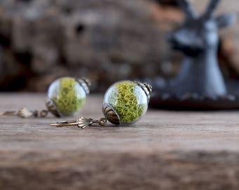 Moss earrings, Moss jewelry, Lime green earrings, Terrarium earrings, Glass vial terrarium jewelry, Botanical earrings, Nature earrings