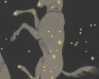 1892 Antique Astronomy Print Canis Major Constellations Stars Space Universe Horoscope Beauty of the Heavens