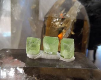 Set of 3 Terminated Bright Green Peridot Crystals  from Mansehra Pakistan | Jewelry Wire Wrapping Supply | Healing Crystal #22