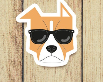 Pit Bull Dog in Sunglasses Vinyl Decal