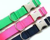 Personalized Dog Collar, Go Tagless! Engraved Name & Phone Number on Metal Buckle, All Webbing Dog Collar, The Endurance Collection