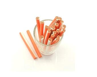 10 dough pumpkin Halloween 5cm Fimo canes