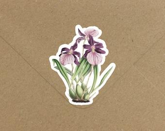 Envelope Seals / Stickers - Miltonia Flower #702 Qty: 30 Stickers