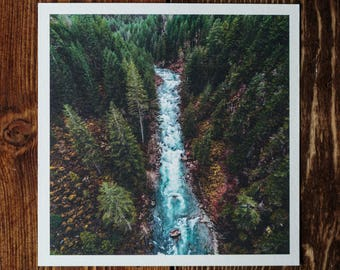 """Washington River Forest 5""""x5"""" Mini Photograph Art Print 