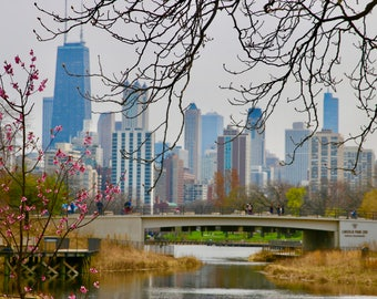 Fine Art Print, Chicago Skyline, Lincoln Park View, Spring, Cityscape, Chicago Print, Travel Photography, Large Wall Art, City Print