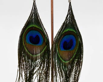 Peacock feathers earrings, clasps in sterling silver, maxi earrings, ideas for gift, organic jewelry, boho chic, antiallergic earrings