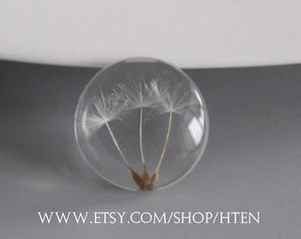 2pcs 25mm Handmade Resin 25mm Cabochons - Dandelion Pendant -Dandelion Charms - DIY flower jewelry-Dandelion jewelry