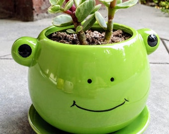 Cute FROG Planter with Succulent (PLANT INCLUDED!)