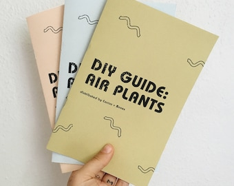 ZINE | DIY Guide: Air Plants