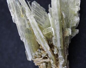 Selenite Blades Cluster Mineral Specimen SELA9