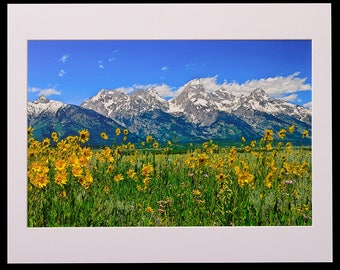 Tetons Peaks and Flowers Matted Fine Art Giclee Print, Modern Wall Art Featuring Fine Art Nature Photography From Grand Teton National Park