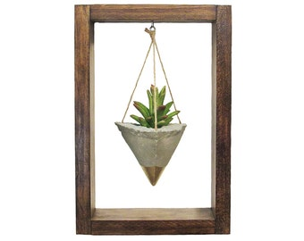 Air Planter, Wall Planter, Succulent Planter, Concrete Planter, Modern Planter, Gold Planter, Air Plant Holder, Wood Planter, Shadow Box