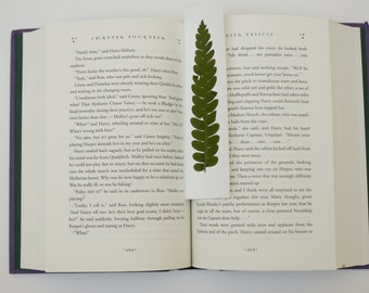 Real pressed Cinnamon fern bookmark - pressed botanical placeholder