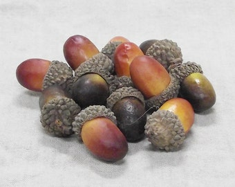 Decorative Artificial Acorns in a Package of 12