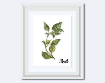 basil print basil printable kitchen printable spice print art for kitchen - Kitchen Wall Decorations