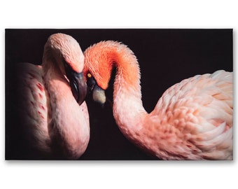 Color-intensive photo image on canvas, flamingos - available in various sizes!