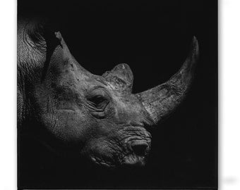 Black and white photo on canvas - rhino