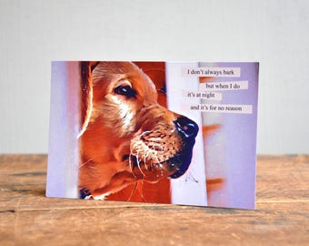 Pet Postcard. Made in USA. 17-6