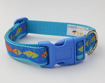Fish Dog Collar, Blue Dog Collar, Boy Dog Collar, Adjustable Dog Collar, Beach Dog Collar