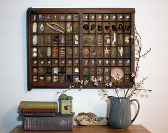 Cabinet of curiosities, vintage printers tray with sea theme, eclectic wall hanging, unique gift