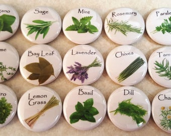 """HERBS - 1"""" magnet sets, with can, without can, refrigerator magnets, locker magnets, bulletin board magnets, teacher gifts, affordable gifts"""