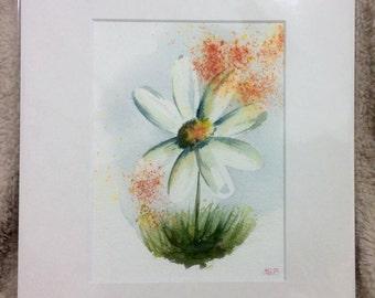 """Daisy crush one 12"""" x 10"""" Original watercolour painting"""