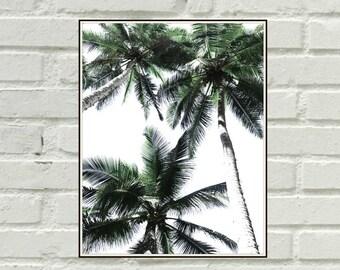 Palm Trees Photography,Green Print,Bohemian Wall Art,Palm Trees Print,Minimalistic Poster,Downloadable Art,Plant Prints,Tropical Decor