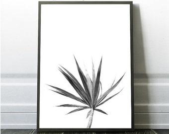 Tropical Digital Download , Leaf Print, Leaf Instant Download, Minimalist Black and White Print, Tropical Leaf, Minimalist  Print, Leaf
