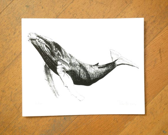 Humpback whale design hand screen printed on 100% cotton paper