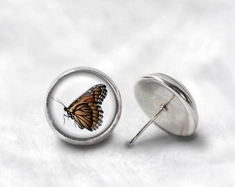 Monarch Butterfly Earrings - Monarch Earrings - Butterfly Jewelry for Her (Pair) Lifetime Guarantee (E0553)