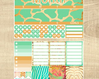 Erin Condren Vertical Monthly Kit - Down in Africa - Any Month!