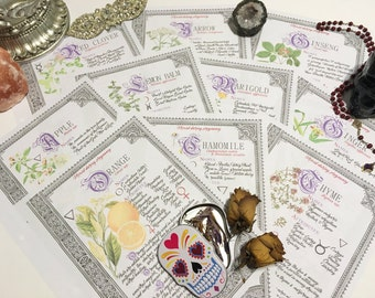 10 Herb Bundle #2  - INSTANT DOWNLOAD Book of Shadows Pages : Chamomile, Apple, Yarrow, Thyme, and more